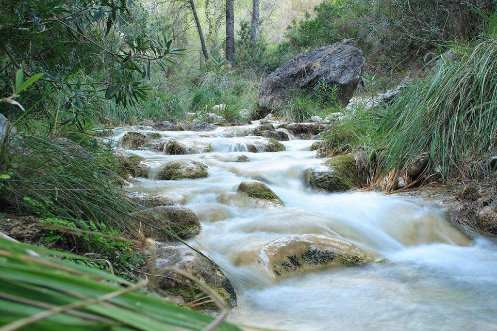 Cauce Río Chíllar